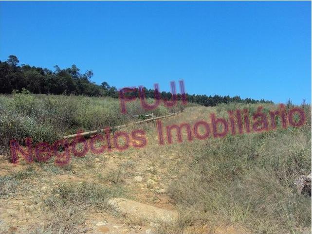 VD Área- Salesópolis- Referência: 2859