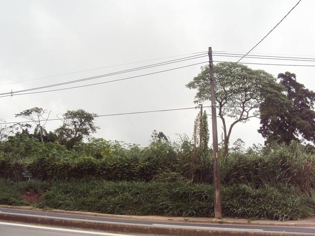 VD Área- Salesópolis- Referência: 4109